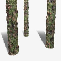 Thick Bark with Moss Seamless