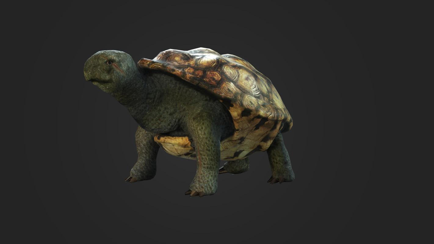 3d turtle games