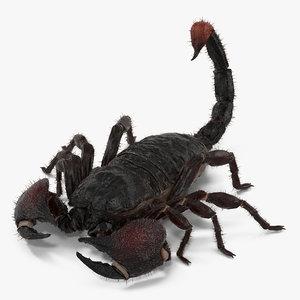 3d black scorpion pose 3