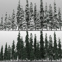 3d model 20 picea engelmanni trees