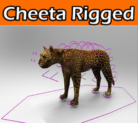 cheetah rigged obj