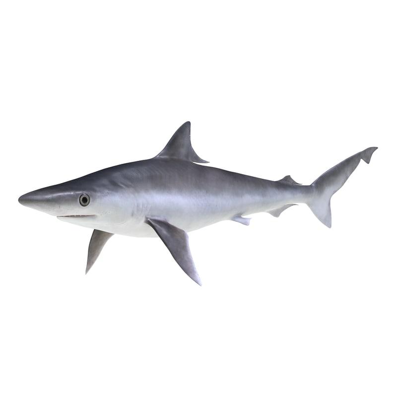 milk shark 3ds
