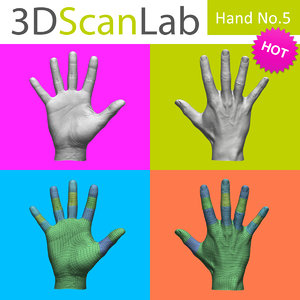 realistic male human hand obj