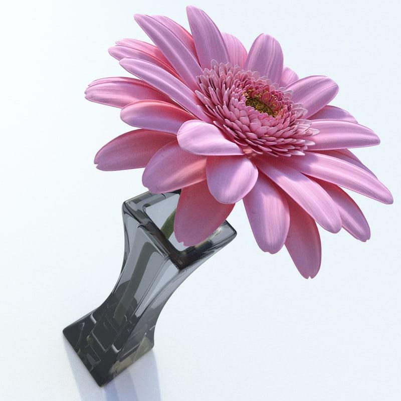 gerbera daisy flower 3ds