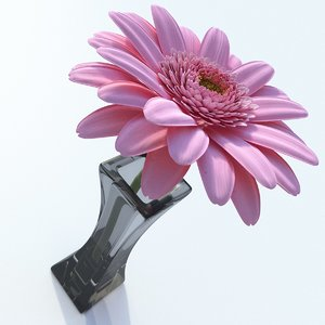 gerbera daisy flower 3ds