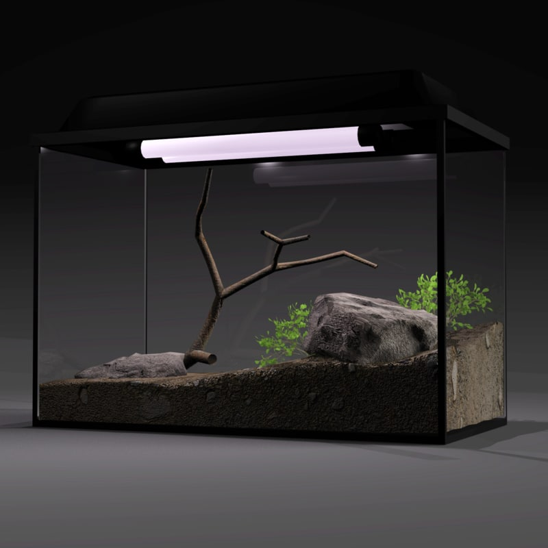 3d aquarium model