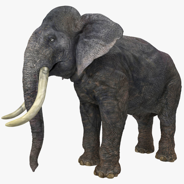 3d obj elephant 2