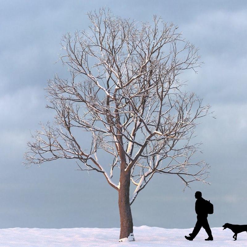 3d winter tree model