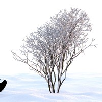 3d winter tree model