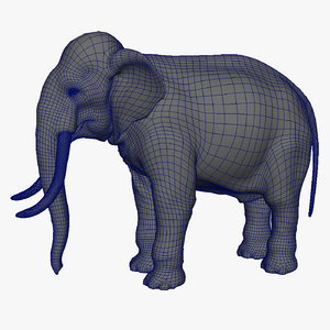 basemesh elephant uvs 3d obj