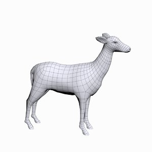 3d doe female deer model