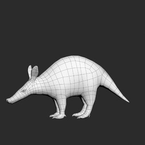 3d model aardvark orycteropus afer