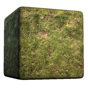 Lumpy Grass