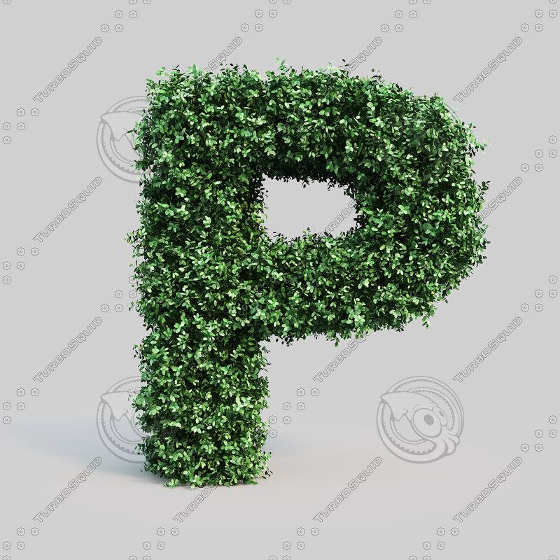 max alphabet p buxus
