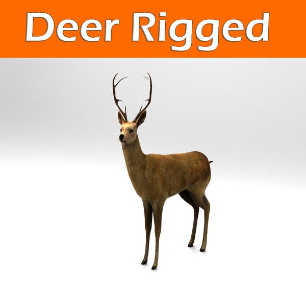 3d deer rigged model
