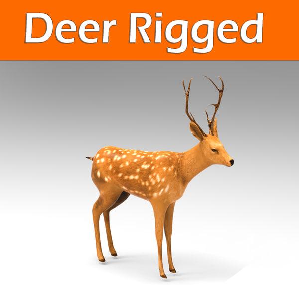 deer rigged 3d model