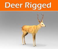 max deer rigged