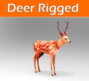 3d model deer rigged