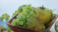 kit grapes bunches 3d model