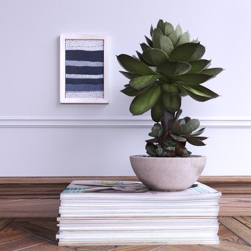 3d succulent pot magazines model