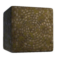 Paving Bricks Stone Circle Courtyard Mossy