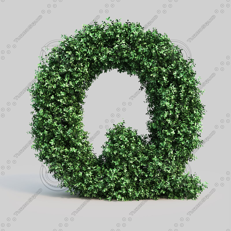 alphabet q buxus 3d model
