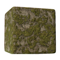 Large Mossy Rock Face
