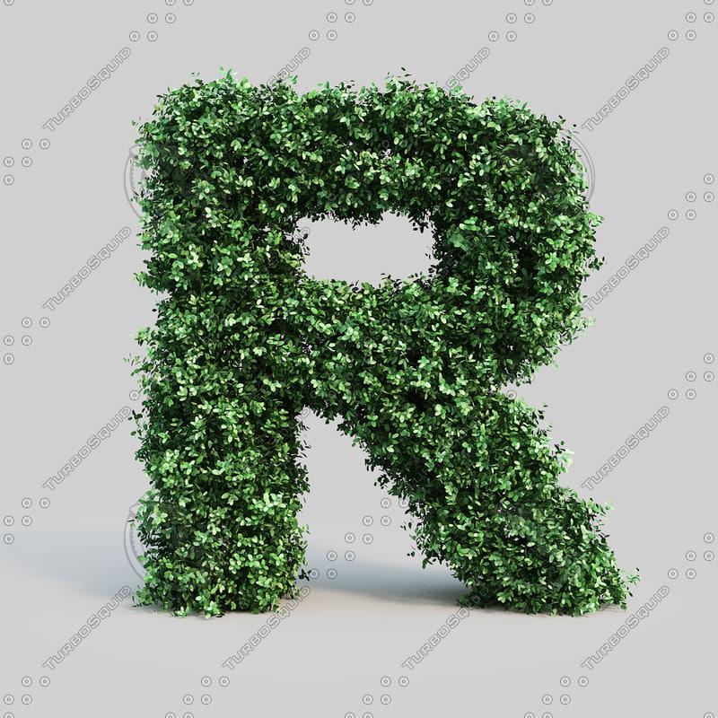 alphabet r buxus max