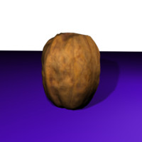 3d model accurate nuts