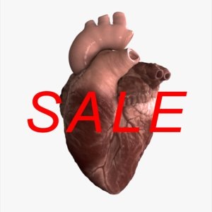 realistic heart animation 3d c4d