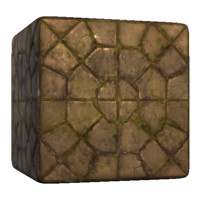 Octagon Paving Stone Overgrown