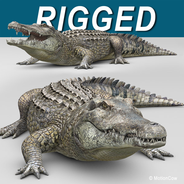 realistic crocodile max