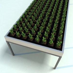 seedling table 3d model
