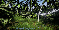 Tropical Nature for PC games