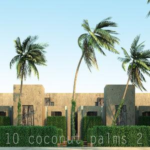 2 coconut 3d max