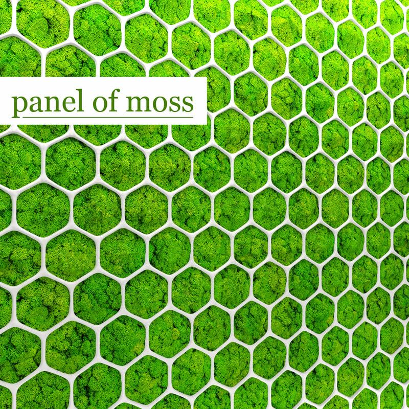 fytowall moss 3d model
