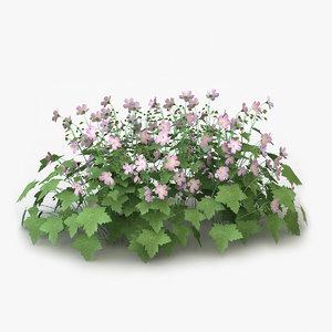 perennial geranium flowers obj