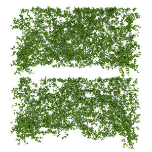 3d model of vines wall 2 items