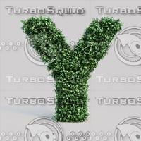 Buxus alphabet Y