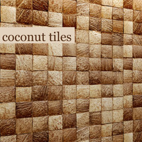 max coconut panel