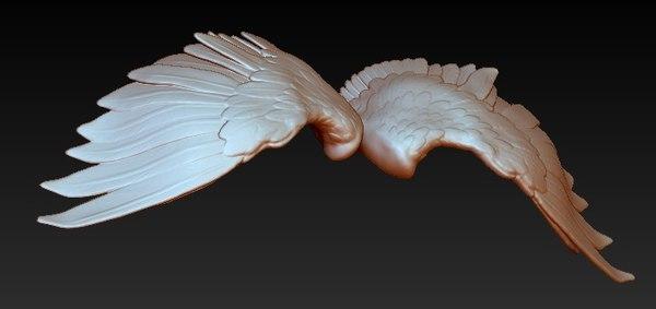 bird wings 3d model