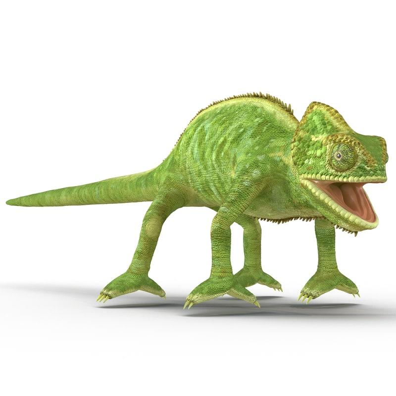 chameleon colors look 3d model