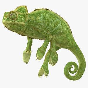 3d chameleon pose 2 model