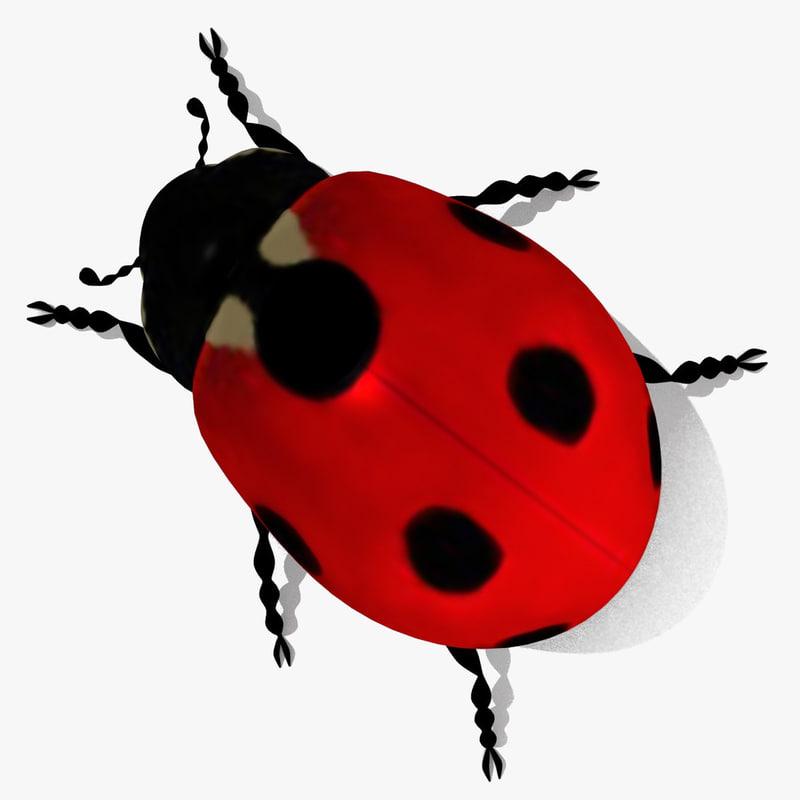 ladybug bug lady 3d 3ds