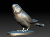 3d model bird