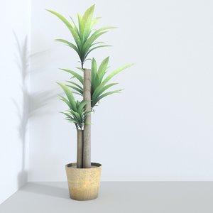3d model of corn plant