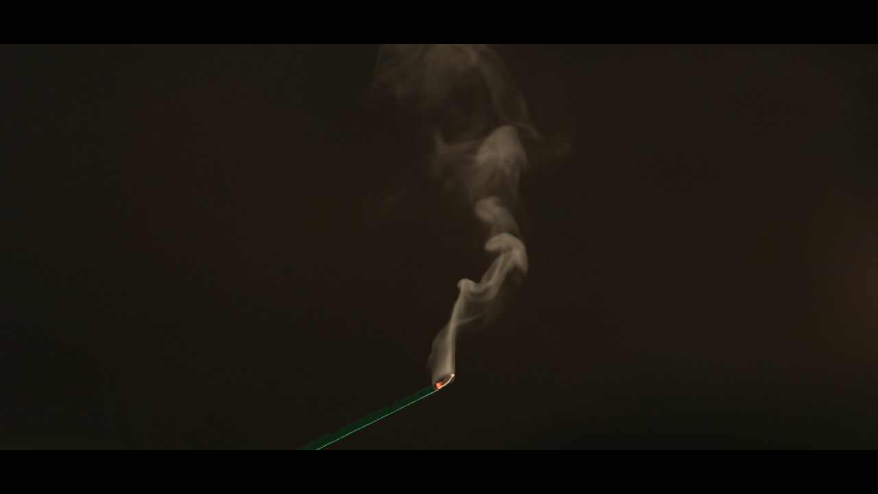 incense smoke fumefx 3d max