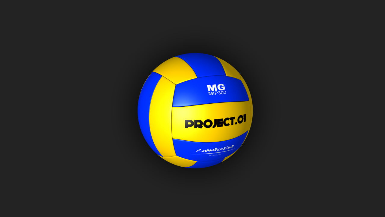 volleyball 3d max