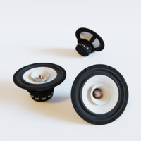 Tang Band W8-1808 full range speaker