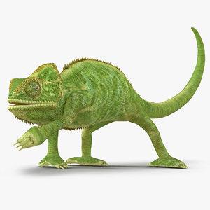 3d model chameleon pose 3